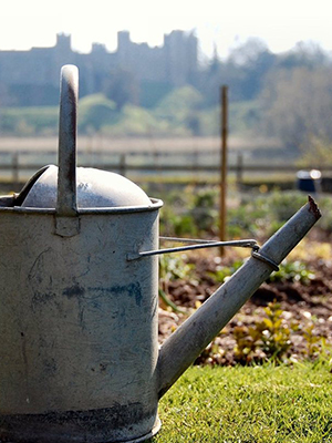 Arundel_Gardens_Association__0001_watering-can-1415354-1279x850